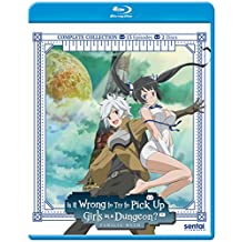 Is It Wrong To Pick Up Girls In A Dungeon? Familia Myth:Complete Collection