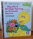 img - for Big Bird Brings Spring to Sesame Street (A Little Golden Book) by Lauren Collier Swindler (1985-05-03) book / textbook / text book