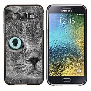 Cubierta protectora del caso de Shell Plástico || Samsung Galaxy E5 E500 || Scottish Fold Gris del ojo azul del gato persa @XPTECH