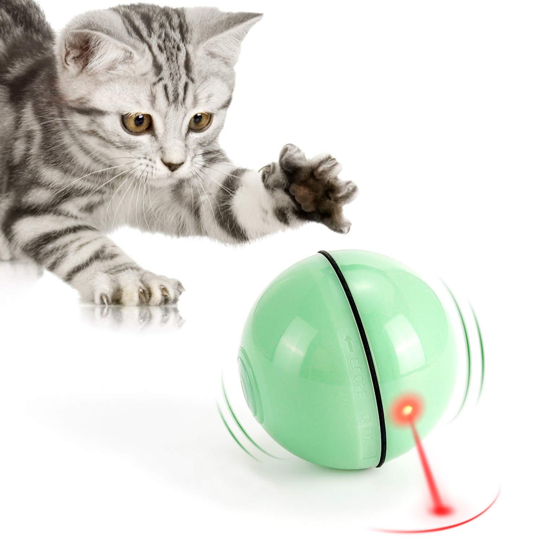 Best Kitten Toys 2020, 61hQZVTu3NL