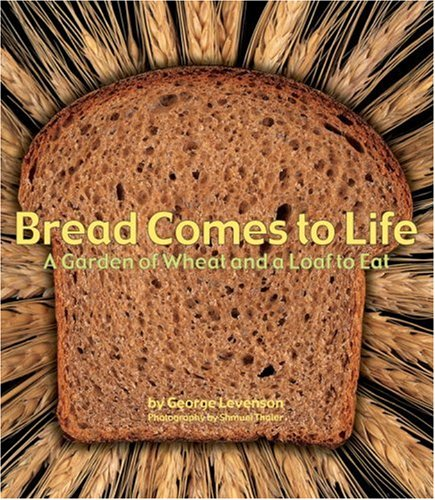 bread-comes-to-life-a-garden-of-wheat-and-a-loaf-to-eat