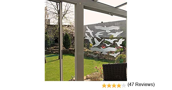 FMJI - Pegatinas para ventana con diseño de siluetas de pájaros ...