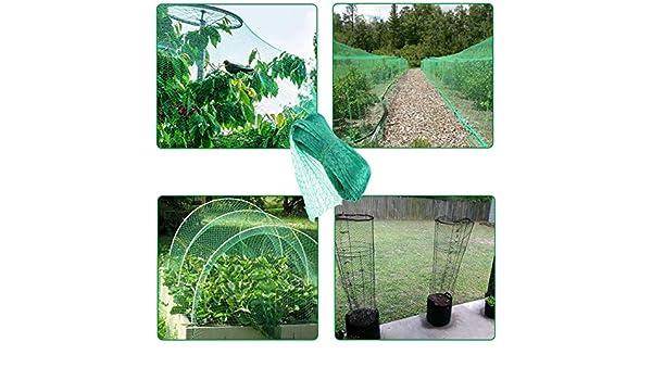 YUNZI Red de protección para pájaros, para Plantas de jardín ...