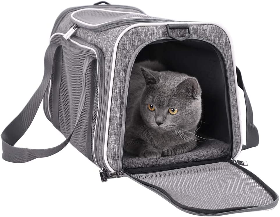 Best Cat Carrier For Car Travel 12