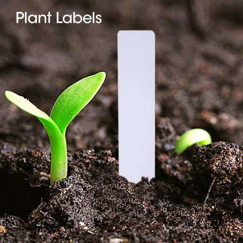 Blanc Garosa 100 PCS /Étiquettes de semences v/ég/étales /Étiquettes /Étanche Plastique de Plantes Marqueurs /Étiquettes de Jardinage de p/épini/ères imperm/éables pour Potager
