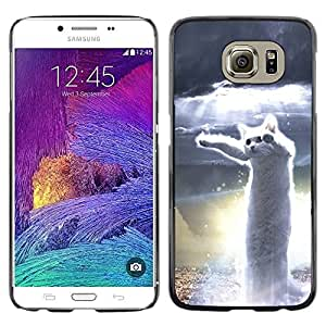 Be Good Phone Accessory // Dura Cáscara cubierta Protectora Caso Carcasa Funda de Protección para Samsung Galaxy S6 SM-G920 // Dancing Cat White Hero Meme Web