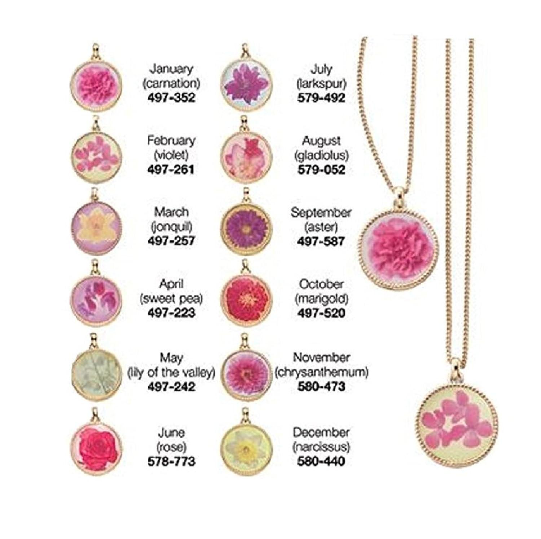 Amazon avon birth month flower necklace pendant may jewelry izmirmasajfo Gallery