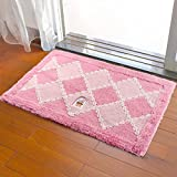 Door mat door mat door bathrooms in the Hall toilet bathroom mat absorbent bathroom mat rug mat Pink