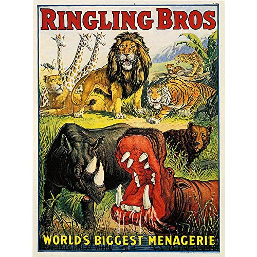 Wee Blue Coo Advert Circus Ringling Bros Lion Hippo Rhino Menagerie USA Unframed Wall Art Print Poster Home Decor Premium