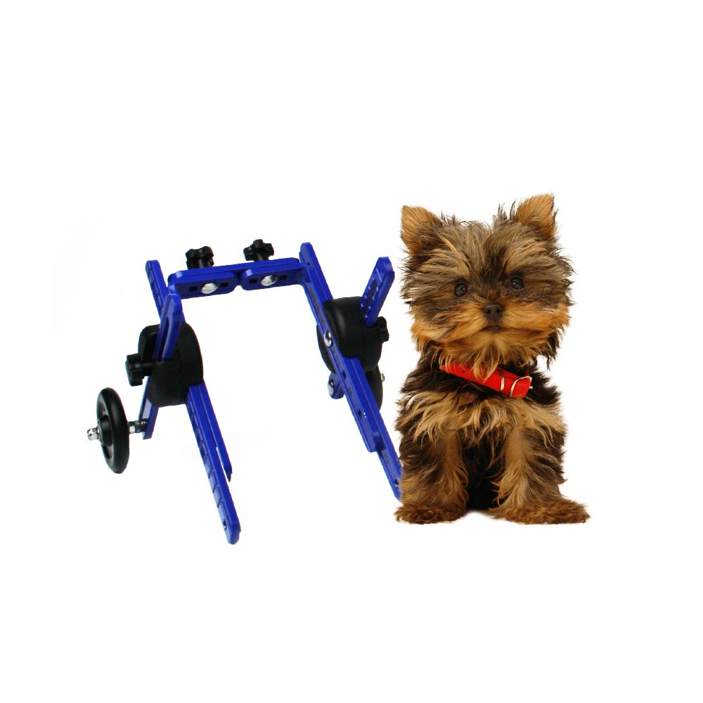 Walkin' Wheels Dog Wheelchair - XS for Mini/Toy Breeds 2-10 Pounds - Veterinarian Approved - Dog Wheelchair for Back Legs by Walkin' Wheels