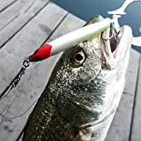 Search : JIANGTAIGONG Fishing Soft Plastic Lures Baits, Smooth Fishing Baits And lures Popper Bait Like Life Fish Swimming, Fishing Bait Kit 4 pc Fishing Bait, The Best Zoom Fishing Baits