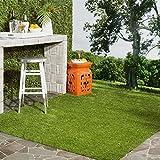 Safavieh VST100A-8 Vista Shag Collection Verdant Green Indoor/Outdoor Faux Grass Area Rug, 8' x 10'