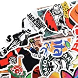 Danslesbls Car Stickers Decals Pack 100 Pieces
