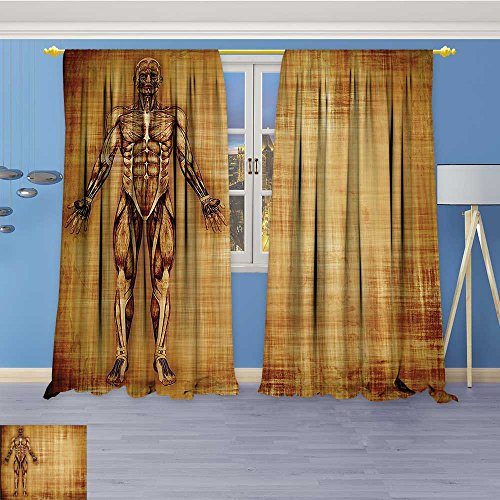 (Antique Decor Collection,Grunge Old Parchment Effect Skelet Muscles of Human Body Retro,Living Room Bedroom Curtain 2 Panels Set, 96W x 84L Inch)