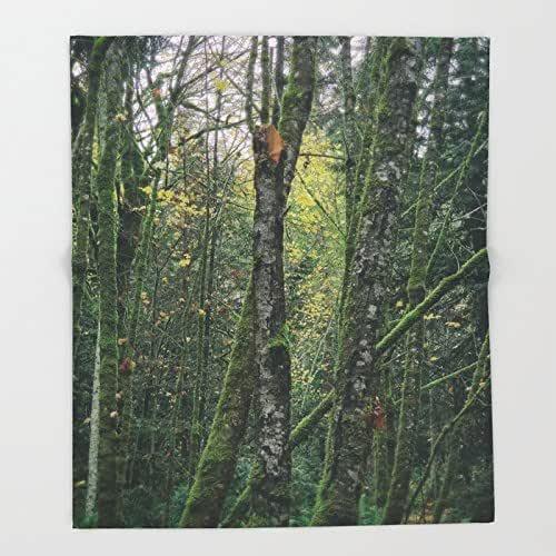 Amazon.com: Moody Forest Print Throw Blanket | Woodland