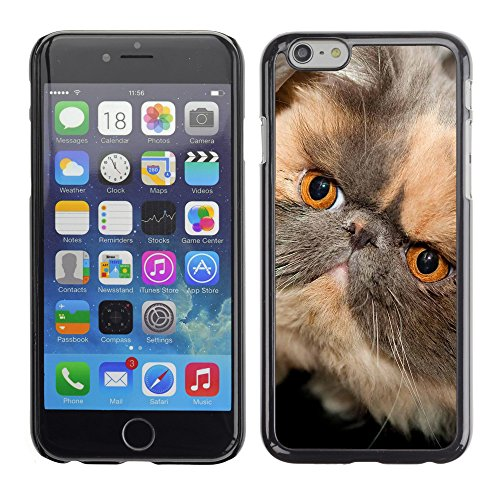 Premio Sottile Slim Cassa Custodia Case Cover Shell // V00003704 visage de chat persan // Apple iPhone 6 6S 6G 4.7""