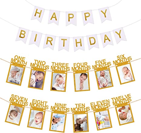 Monthly Milestone Photo Banner 12 Month Photo Banner for First Birthday 1st Birthday Banner for Newborn to 12 Months Growth Record