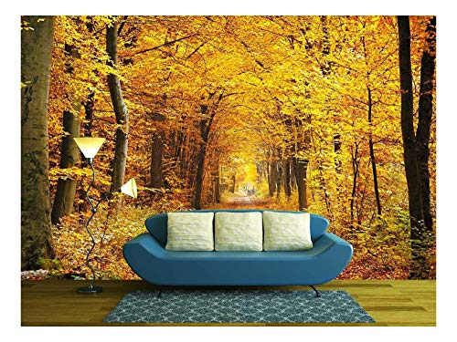 (wall26 - Road in the autumn forest - Removable Wall Mural | Self-adhesive Large Wallpaper - 100x144 inches)