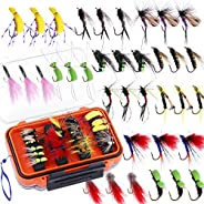 ODDSPRO Fly Fishing Flies Kit, Fly Fishing Lures, 36/78Pcs Fly Fishing Dry Flies Wet Flies Assortment Kit with