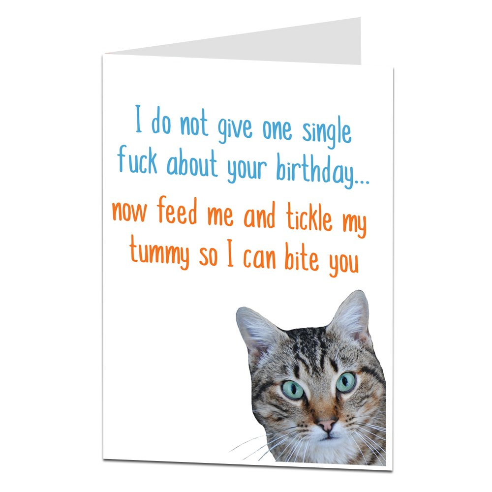 Happy Birthday Card From The Cat For Pet Lover Amazoncouk Office Products