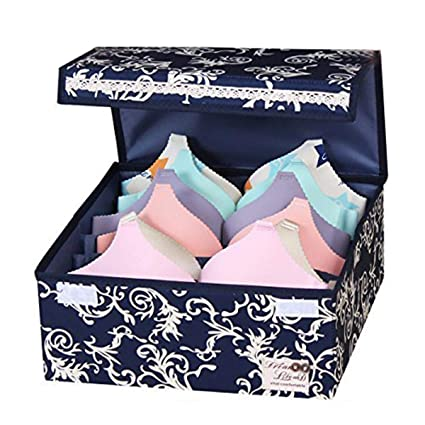 HOMESGU Designed For Bras 6 Grid Foldable Bra Storage Box With Dust Proof  Lids Washable