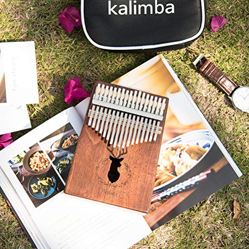 Thumb Piano, Kalimba 17 Key Finger Piano African Instrument with EVA High-performance Protective Box (Koa Elk)
