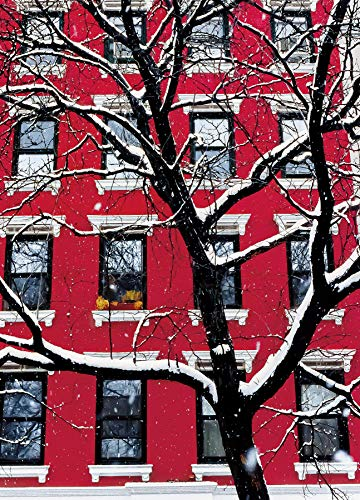 Red Building in Snow New York City Christmas Holiday Boxed Cards Set of 12 Season's Greetings Cards and 12 Envelopes. Made in ()