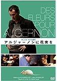 アルジャーノンに花束を 《IVCベストバリューコレクション~文学編~》 [DVD]