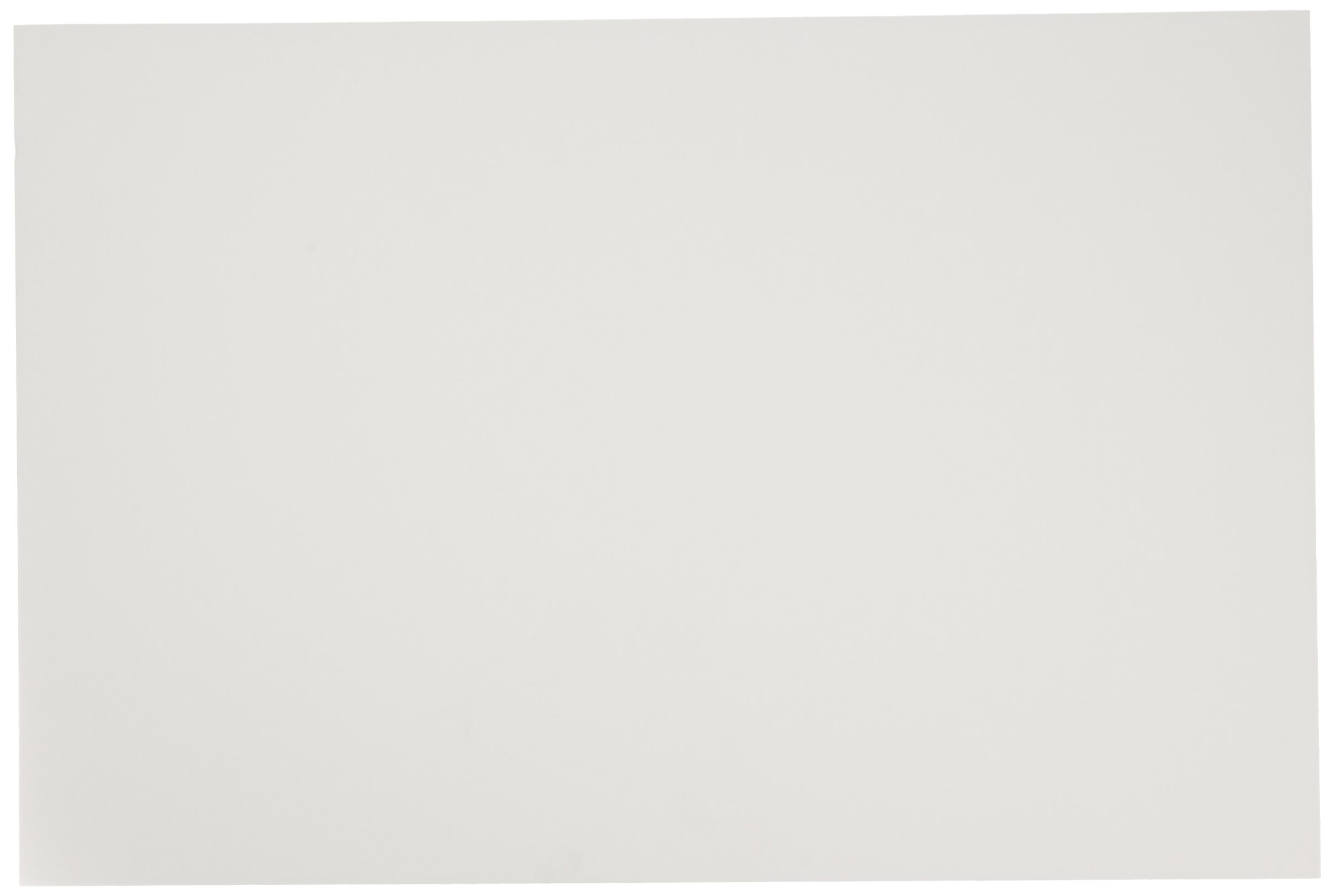 Crescent 99 Illustration Board 14 ply - 20 x 30 inches - Pack of 10 - White - 405105 by Crescent