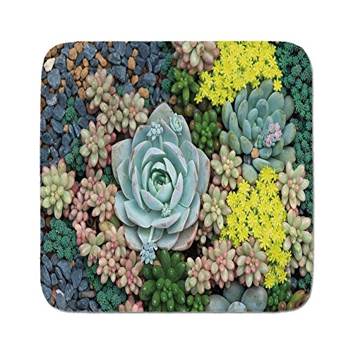 Cozy Seat Protector Pads Cushion Area Rug,Succulent,Miniature for sale  Delivered anywhere in USA