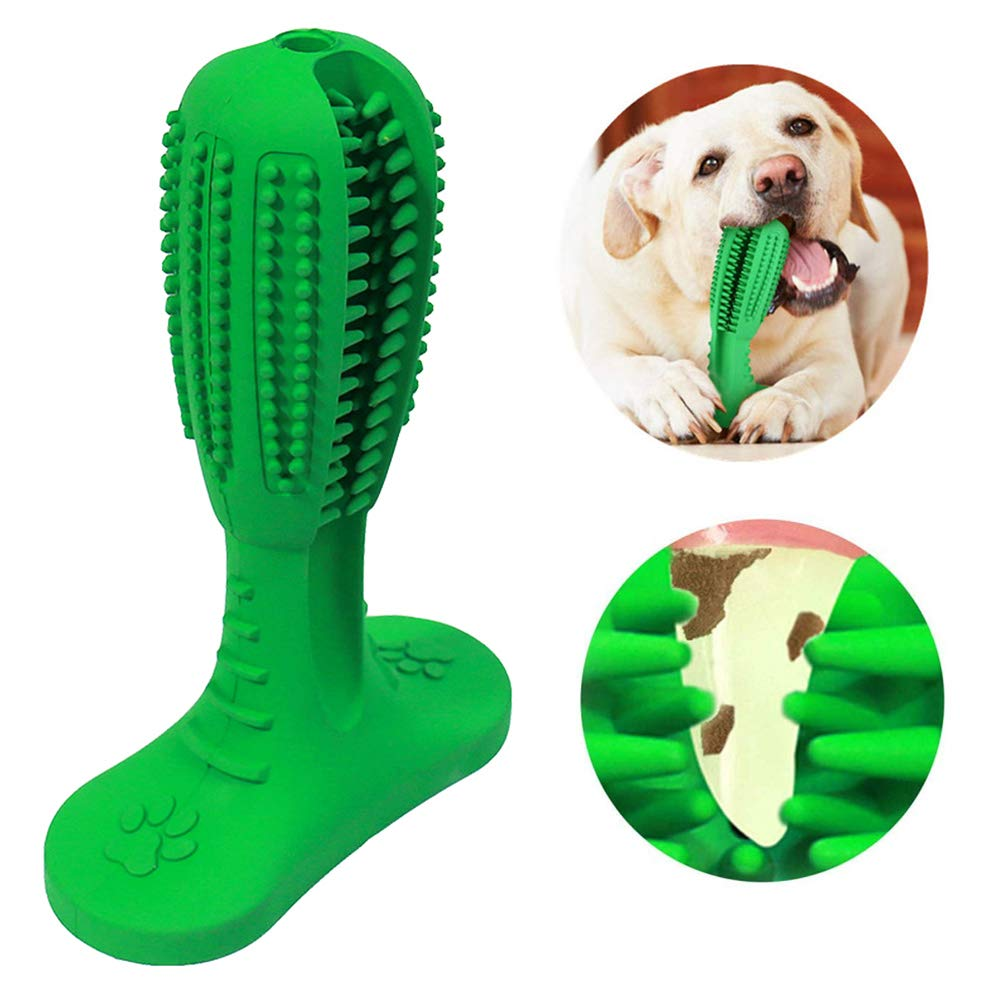 Bibolin Dog Toothbrush Stick Dog Chew Teeth Cleaning Puppy Dental Care Brushing Stick Nontoxic Natural Rubber Bite Resistant Chew Toys for Dogs Pet Oral Care by Bibolin