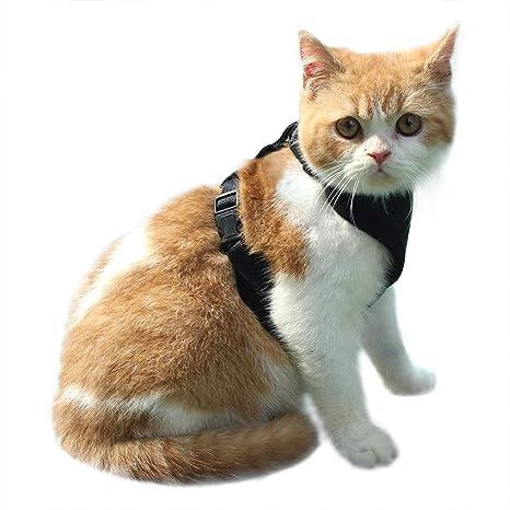 EXPAWLORER Arnés de Gato a Prueba de Escape, arnés de Malla Suave Ajustable para Gato