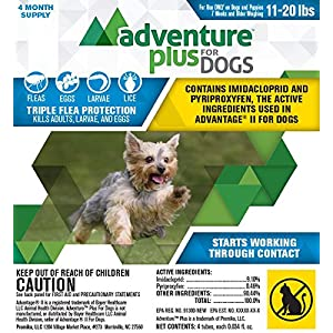 Adventure Plus for Dogs 4pk 11-20lb 26