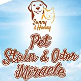 Pet Stain & Odor Miracle - Enzyme Cleaner for Dog and Cat Urine, Feces, Vomit, Drool (Peppermint Spice Scent - 32FL OZ)