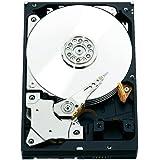 WD RE 2 TB Enterprise Hard Drive: 3.5 Inch