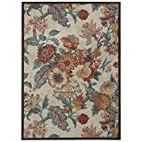 Nourison Wav05/Arti Delight (WAD20) Poppy Rectangle Area Rug, 5-Feet by 7-Feet  (5′ x 7′) Review