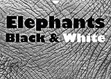 Elephants Black & White 2016: Africas fascinating pachyderms (Calvendo Animals)