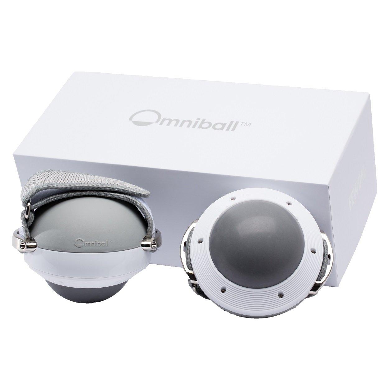オムニボール Omni Ball 360度回転ローリングウェイトボール 1.8kg×2個 CP-132   B07583P6T3