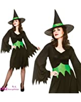Wicked Witch - Adult Costume Lady: STANDARD