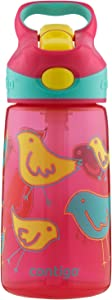 Contigo AUTOSPOUT Straw Striker Kids Water Bottle, 14 oz, Cherry Blossom Birds