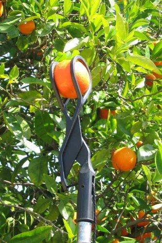 The twister fruit picker desertcart