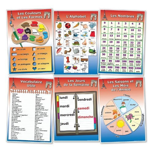 Wildgoose Education Fr0024 Franç ais vocabulaire Poster, Lot de 1 (lot de 6) Lot de 1(lot de 6) Wildgoose Education Ltd