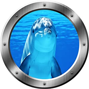 "Porpoise Wall Decal Dolphin Porthole 3D Wall Sticker Peel and Stick Decor VWAQ-SP29 (14"" Diameter)"