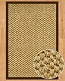 NaturalAreaRugs Tanzania Sisal Rug, Brown Cotton Border, Eco-Friendly, 4' x 6'