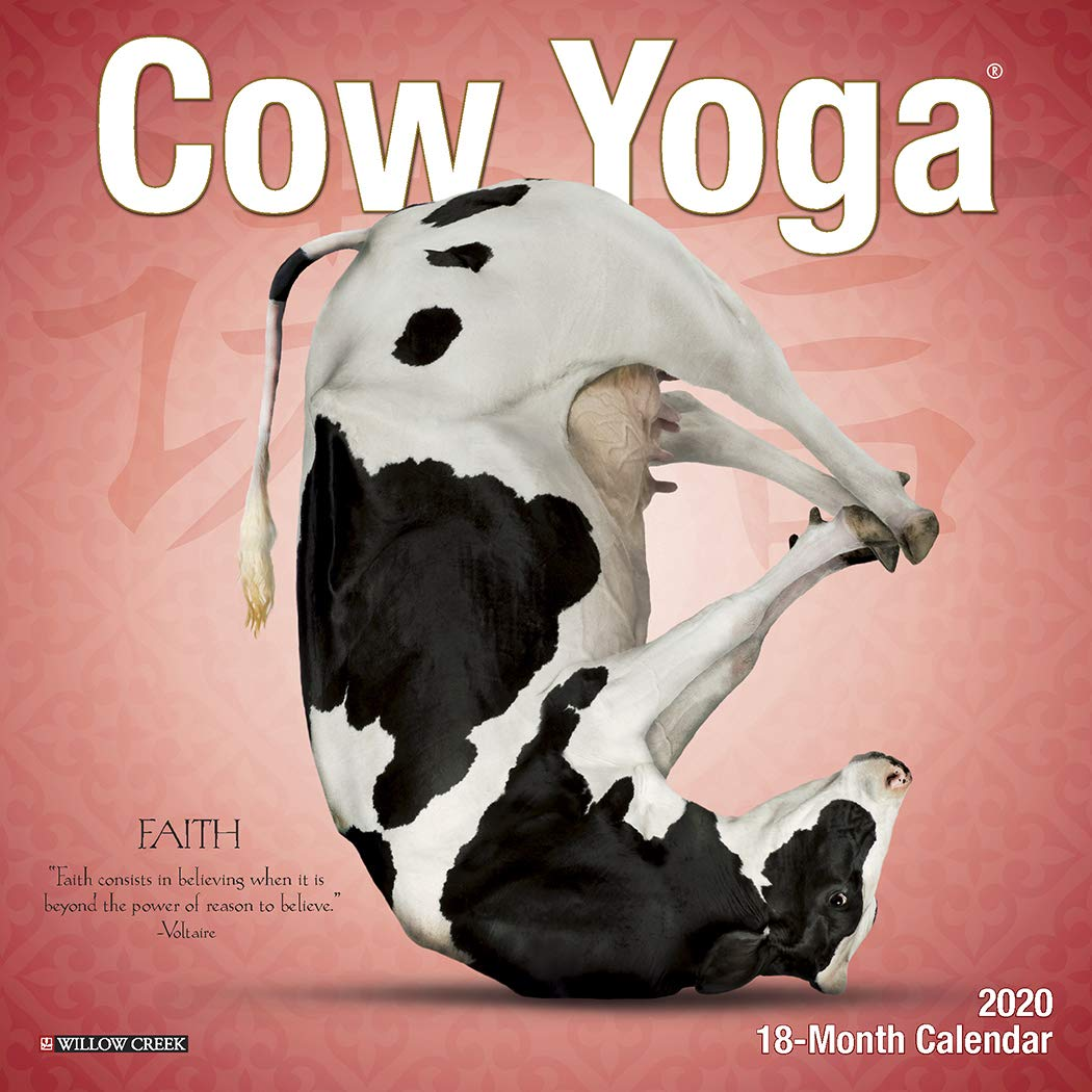 Cow Yoga 2020 Mini Wall Calendar: Amazon.es: Willow Creek ...