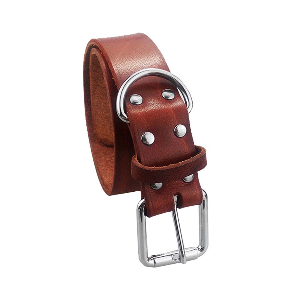 Cuoio di lusso Heavy Duty Soft Touch di base Classic Collari per medie e grandi cani Brown Peting