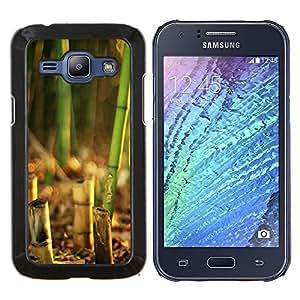 EJOOY---Cubierta de la caja de protección para la piel dura ** Samsung Galaxy J1 J100 ** --Puesta de sol de coco Beautiful Nature 119