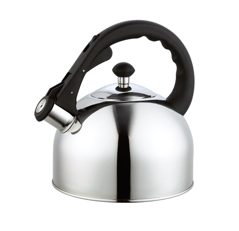 Homeinart Whistling Tea Kettle Stainless Tea Kettles Stovetop 2.6 QT by Homeinart