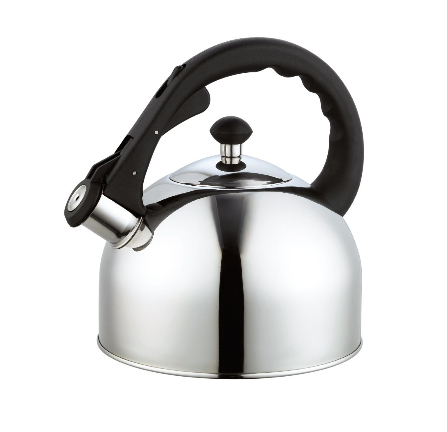 Homeinart Whistling Tea Kettle Stainless Tea Kettles Stovetop 2.6 QT by Homeinart (Image #1)