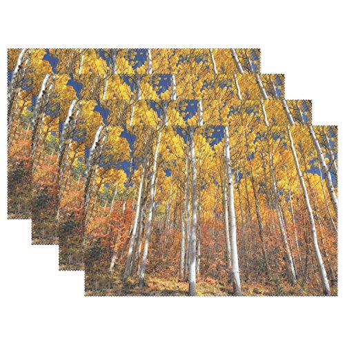 Aspen Placemat - Naanle Autumn Landscape Placemats, Golden Aspens Red Oak Heat-resistant Washable Table Place Mats for Kitchen Dining Table Decoration